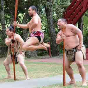 Maori Game Poi Rakau